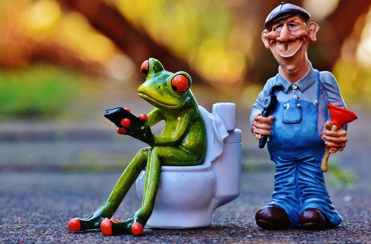 plumber, frog, loo