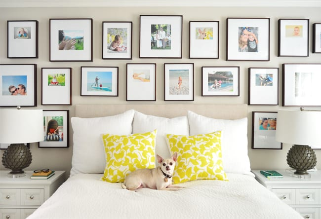 Beige Paint Bed With Dog Frame Gallery Jpg